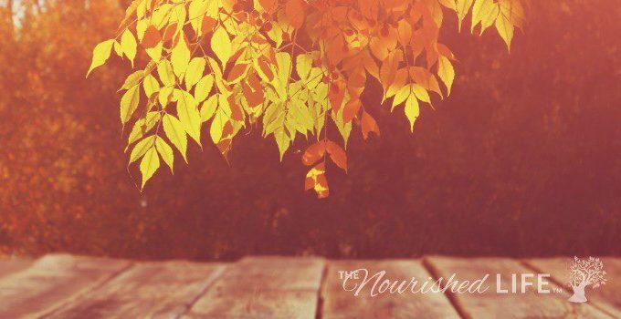 fall-essential-oil-blends-at-livingthenourishedlife-com